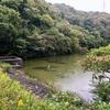 若ノ谷池(兵庫県南あわじ)