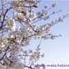 桜の写真は難しいので初心者こそRAWで撮って失敗しないようにしよう!