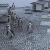 ケープペンギン(四国水族館)の生態と歴史
