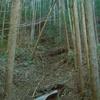気田森林鉄道 6 森山隧道上流側坑門~県道合流地点