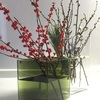 イッタラの花びんは花を投げ入れるだけで絵になる優れもの!