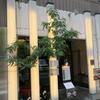 千代田区飯田橋 和彩かくやの焼き鮭といくらの親子丼定食!!!