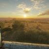 Steamゲーム:theHunter: Call of the Wild™をDLC全購入!