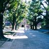 東京大学お散歩写真