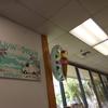 はじめてのハワイ旅行⑦【5泊7日】2日目 ベルトラのツアーでハナウマ湾シュノーケリング!ハナウマ湾への持ち物等をレポート!