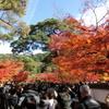 京都での「冷泉家時雨亭叢書百巻完結記念」の祝賀会