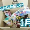 【節約】1月分のCafuCafu(カフカフ)が届いた!今月は総額○○円相当⁉