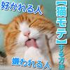 猫に好かれる人と嫌われる人の特徴は!?猫にモテる方法を知ろう!【猫に関する知識】