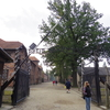 ガイドなしの個人ツアーでアウシュヴィッツ・ビルケナウ強制収容所に行ってきた