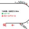 【エルムS・2019年】NO.1同士の頂上決戦を制した!ドリームキラリ|逃げ馬レース結果