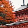 比叡山あたりが紅葉見頃だそうだ(滋賀)