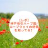 【レポ】神戸布引ハーブ園/ロープウェイの絶景を知ってる?【フォトジェニック】