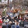 新潟県で春に行われる有名なお祭り、イベント4選!