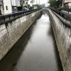 早朝の神田川十六景 〜 久しぶりで、神田川の早朝散歩をしました。雨の中、ヘマをしでかしました。