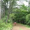 勝俣部長の「高尾登山と健康体質作り」615・・・・親切 なのか なあ