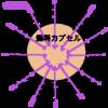磁力線を中心に向けた方法で核融合は起こるのか?