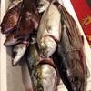 昨日届いた魚たち