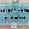 【移植2周期目 自然周期】 D13 移植日決定