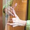 人気のあった以前のブログから ハープ奏法 2◆タップして 次へ◆