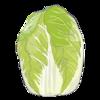 【アメリカで食の安全を守る(のは自己責任)】虫食いの白菜に安心する話し。