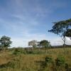国境の町キゴマでタンザニア軍の兵士たちに取り囲まれる。