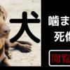 犬に噛まれて死にかけた女性たち。宮崎・女児の両親「骨が見えていた」