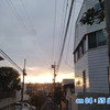 ジーノ、秋田へ行く! 2016 -1-