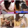 干物女子と幸せを呼ぶ猫:引退騒動後の現在に至る経緯