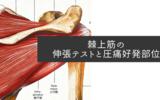 棘上筋の伸張テストと圧痛好発部位