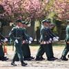 練馬駐屯地 創設67周年記念行事 第1師団創立56周年記念行事 2018
