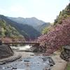奈良県を斜断し紀伊半島2/3周のツーリングをしてきた。