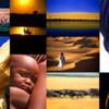 LIGHT ON THE WILD アレッサンドロ・ベーの新しいウェブサイト