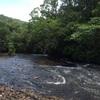 パラオ旅行 ガラマオの滝