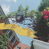 【東京】美しいお庭のあるお屋敷フレンチ