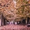 「秋を撮りに行こう♪」_撮影特訓編