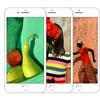 ドコモ、au、ソフトバンクの「iPhone8」「iPhone8 Plus」の販売値段と実質負担額のまとめ