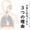 横隔膜がパフォーマンスアップに必要な筋肉である3つの理由