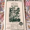 アメリカでシソ栽培