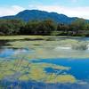仙禄湖(長野県佐久)