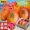 訳アリ「沖縄産マンゴー」を食べてみた
