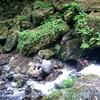 【写真 ブログ】滝百選!岐阜県にある養老の滝へ行ってきた!