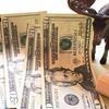 日本より手数料が安いアメリカのロボアドバイザー投資を始めました