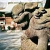 津田沼・菊田神社