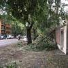4日目: ローマの嵐の被害