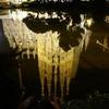 スペインの春⑧セビーリャ、そして夜のサグラダ・ファミリア
