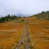アイコマイエロー・どこまでも続く草紅葉の稜線と黄金色の丘 @会津駒ヶ岳・中門岳