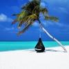 ハワイ3泊無料!ヒルトングランドバケーションズ無料宿泊予約の詳細。