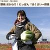 """はくさい 2 みちば和食たて野料理長のオススメは炒め物ですか?一手間かけた「干した白菜」がポイントの「白菜の塩辛いため」/ 平泉成さんが作った「白菜とベーコンのミルフィーユ」.誰でも手軽に作れます. でも「ミルフィーユ」ってフランス菓子の名前では? そして,白菜の英語は""""Napa  Cabbage """" or  """"Chinese Cabbage""""? 食材探検 おかわり!にっぽん(2)"""