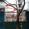 【建替編】その手があったか⁉ 驚きのベトナム建築 in Vietnam