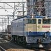 1月16日撮影 武蔵野線 新座駅 貨物列車撮影 EF65PF3本とその他撮影